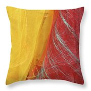 2 Scarves Throw Pillow