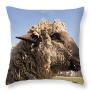 Sheep In Profile Throw Pillow