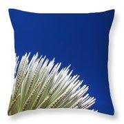 Silversword Plant Throw Pillow