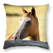 Single Horse Throw Pillow