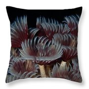 Social Feather Dusters Throw Pillow
