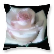 Soft Pink Rose Bud Throw Pillow