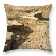 Soil Erosion Throw Pillow