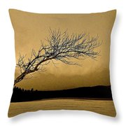 Solitude In A New Key Throw Pillow