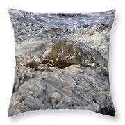 Splash Of A Momenary Water Sculpture Throw Pillow