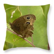 2-spotted Wood Nymph Throw Pillow