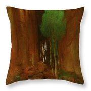 Spring In A Narrow Gorge  Throw Pillow