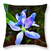 Spring Time Series Painting Throw Pillow