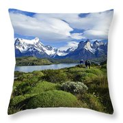 Springtime In Patagonia Throw Pillow