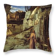St. Francis In The Desert Throw Pillow