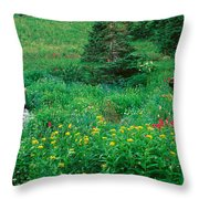 Stream And Alpine Flowers, Ouray Throw Pillow