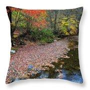 Sugar Maple Birch River Throw Pillow