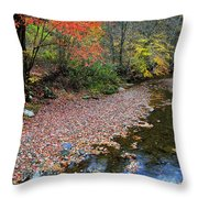 Sugar Maple Birch River Throw Pillow