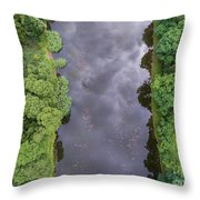 Summer Landscape. Green Trees At Riverbank In Poland. Throw Pillow