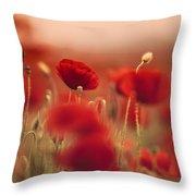 Summer Poppy Meadow Throw Pillow