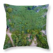 Summer Time Lake And Green Forest, In Poland Lanscape.  Throw Pillow