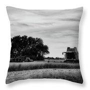 Sunset Harvest Throw Pillow
