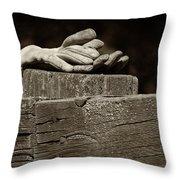 Taking A Break Throw Pillow by Sandra Bronstein