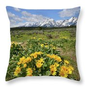 Teton Balsam Root Throw Pillow