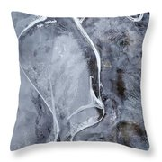 Texture Of Ice Throw Pillow