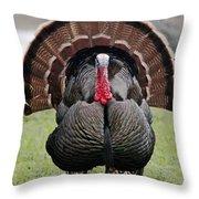 Thanksgiving Throw Pillow