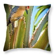 The Gila Woodpecker Throw Pillow