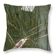 The Lodge At Blue Lakes Decaying Fish Throw Pillow