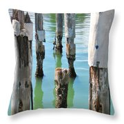 The Signs Of Time Throw Pillow