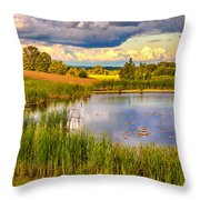 The Source Throw Pillow