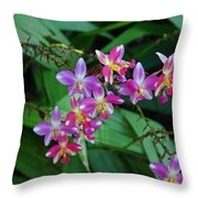 The Wild Side Of Wednesday Throw Pillow