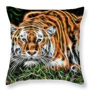 Tiger Collection Throw Pillow