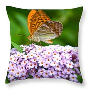 Tramonti Butterfly Throw Pillow