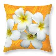 Tropical Frangrapani II Throw Pillow