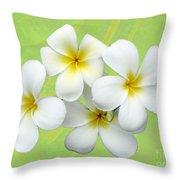 Tropical Frangrapani Throw Pillow