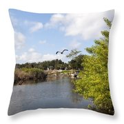 Turkey Creek In Palm Bay Florida Throw Pillow