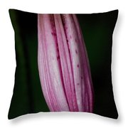 Turk's Cap Lily Throw Pillow