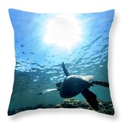 Turtles View Throw Pillow