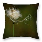 Tussock Cottongrass Throw Pillow