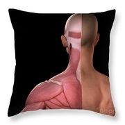 Upper Body Muscles Throw Pillow
