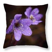 Vanishing Beayty Of Hepatica Throw Pillow