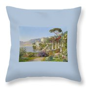 View Of A Lake In The South Throw Pillow