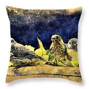 Vintage Bluebird Print Throw Pillow