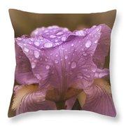 Vintage Iris Throw Pillow