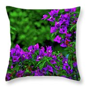 2- Visions Of Violet Throw Pillow