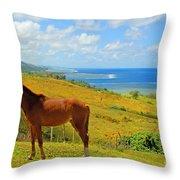 Viti Levu, Coral Coast Throw Pillow