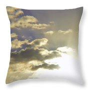 Vuelo Al Sol Throw Pillow