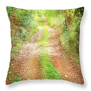 Walkway In Secluded Deciduous Forest Throw Pillow