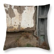 Weathered Door In A Wall Throw Pillow