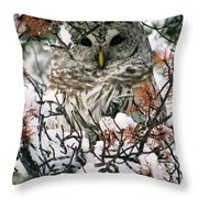What A Hoot Throw Pillow