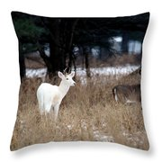 White Buck Brown Doe Throw Pillow